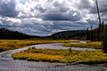 Yellowstone NP - 2005